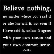 Believenothingbuddhamagnetc1175060